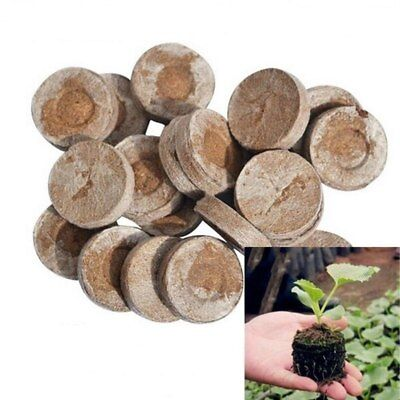 JIFFY PEAT PELLETS GARDEN SEED PLANT STARTER PLUGS 5 - 50pcs -  Best (Best Price Garden Seeds)