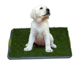 NEW Easy Dog Potty Training - Made with Synthetic Grass - 3 Layered Systems Condition: New