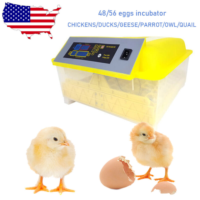 48/56 Eggs Incubator Hatcher Digital Fully Automatic Turning Temperature Control
