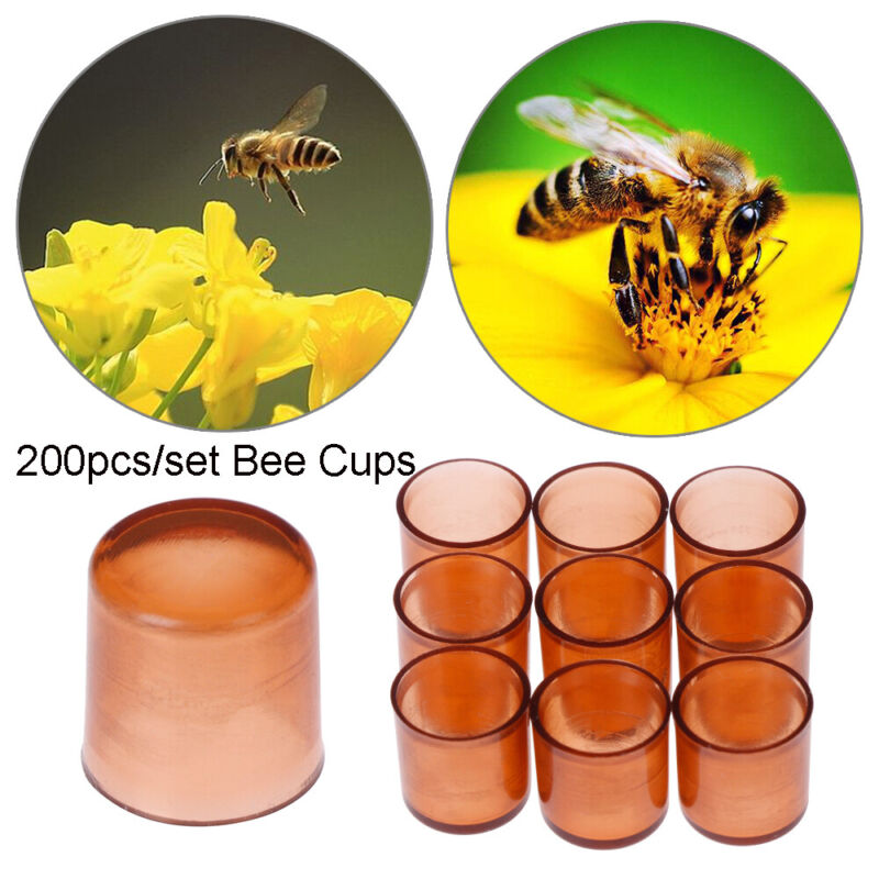 Plastic Apiculture Garden supplies Queen Cell Cups Beekeeping Bee Feeding Tools