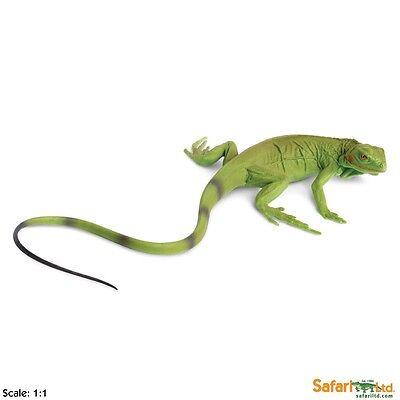 Iguana Baby Incredible Creatures Figure Safari Ltd Toys Educational Collectibles