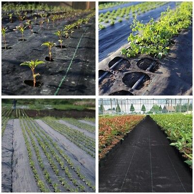 6ft x 250ft Landscape Fabric 4.1oz Weed Barrier Woven PP UV Treated Ground Cover