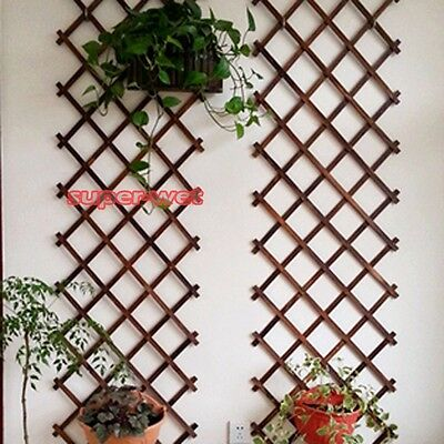 Natural Wood Wall Trellis Expanding Garden Flower Plant Climbing Fence Art Decor
