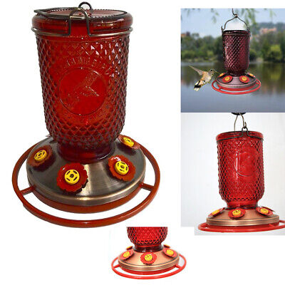 Best Hummingbird Feeder - BEST Hummingbird Feeder 6 Ports Bee Guards Red Mason Jar Window Glass Ant Copper