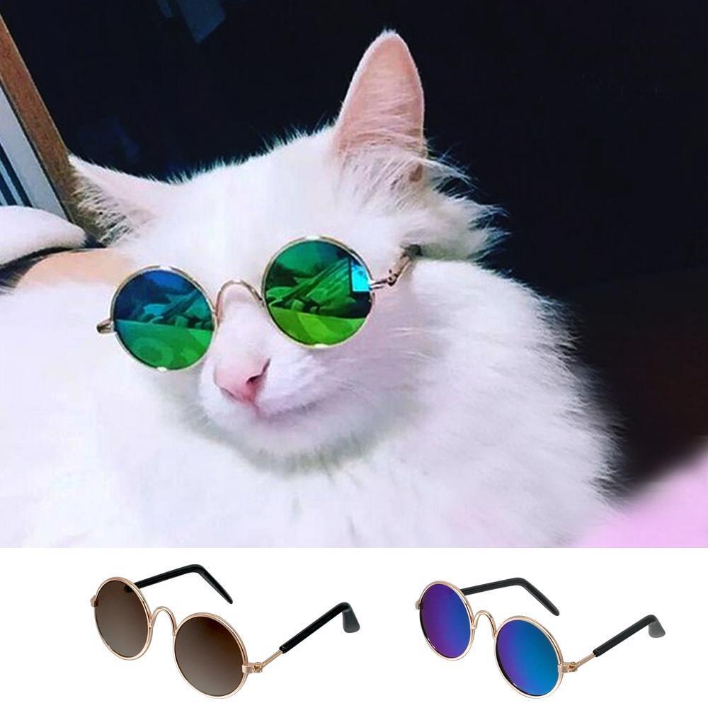 d830f0cb3d Details about Pet Sunglasses Black Green Cat Glasses Summer Wear Fashion  Grooming Accessories