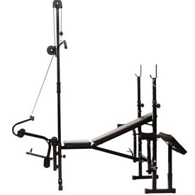 Multifunctional Weight Bench (Black) Gym Workout Training Machine Sports Fitness: