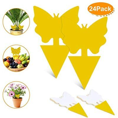 Dw 24 Pack Sticky Fruit Fly And Fungus Gnat Trap Yellow Bug Insect Killer For