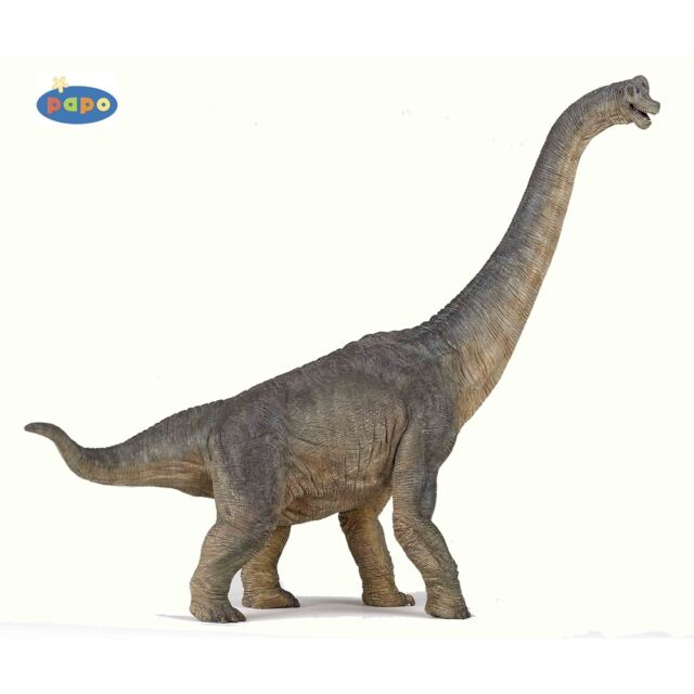 Papo Brachiosaurus Toy Figurine - Figure High Quality Detailed Plastic Dinosaur