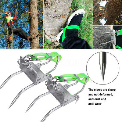 Tree Climbing Spikes Claws Safety Pole Climb Tool Wstrapsgloves Picking Fruit