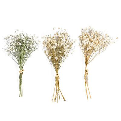 3 Cabezas De Seda Flores Secas Artificial Ramo Boda Hogar Bricolaje Decoración