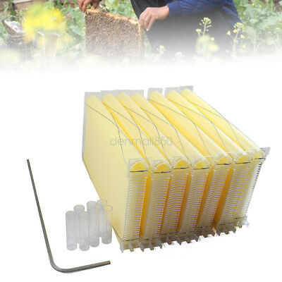 7pcs Auto Beehive Frame Comb Beehive Frame Beekeeping Hive Household Tools Usa