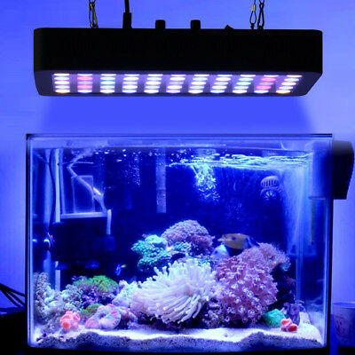 New Dimmable 165W 55LEDs Aquarium Light Full Spectrum Coral Fish Tank Light Bulb