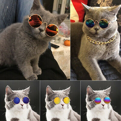 Mini Cat Dog Sunglasses Glasses Costume Pet Toy Kitten Outfit Clothes Funny (Pet Sunglasses)