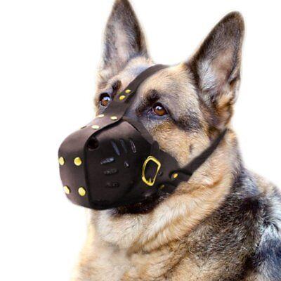 Best Genuine Leather Large Dog Muzzle Cage Mask for Medium Big Breed Adjustable
