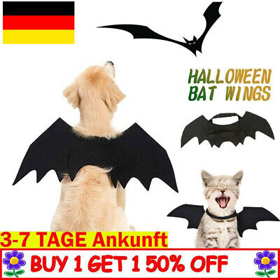 Fledermausflügel Tier Haustier Dog Hund Katze Vampir Halloween - Fledermaus Kostüm Flügel