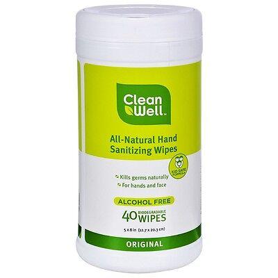 CleanWell Botanical Hand Sanitizing Wipes Canister - Origina