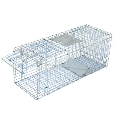 "Animal Trap Steel Cage for Small Live Rodent Rat Squirrel Raccoon Iron 32"" x 12"""