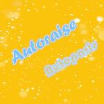 Autoraise Autoparts