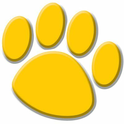 Gold Paw Prints Accents Teacher Created Resources Tcr4645