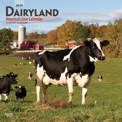 2019 Cow Dairyland Wall Calendar, Cows by - Cow Calendar
