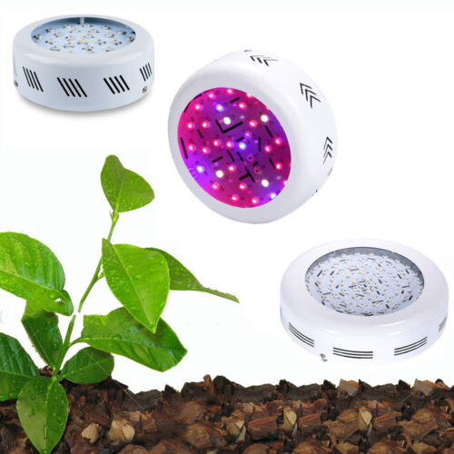 150w 200w 300w 700w Led Grow Light Kits Lamp For Plants