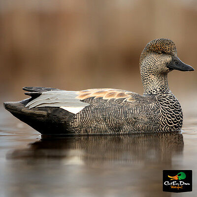 NEW AVERY GREENHEAD GEAR GHG PRO GRADE PG LS GADWALL FLOATER DUCK DECOYS 6