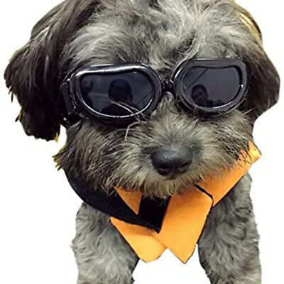 Dog Goggles Small Dog Sunglasses Waterproof Windproof UV Protection For Doggy