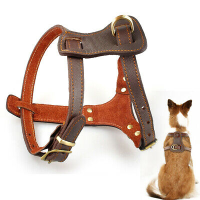 - Brown Genuine Leather Dog Harness Pet Training Harness for Mastiff Boxer Pitbull