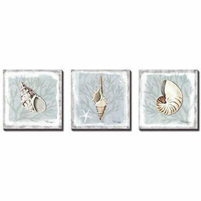 - Seashell Wall Decor Bathroom Modern Coastal Art Ocean Beach Theme Picture On ()