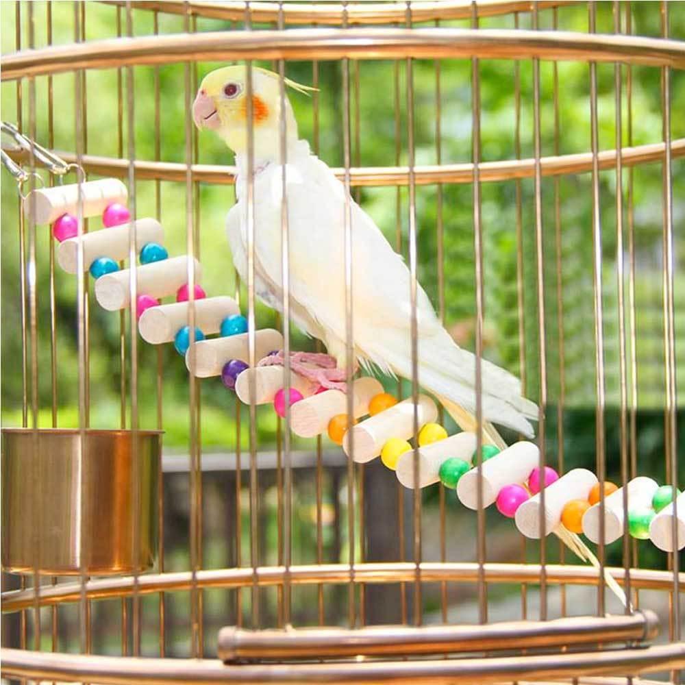 Ponte legno passerella pensile per uccelli pappagallo pappagalli volatili gabbia