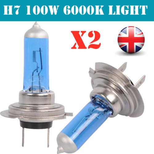 Car Parts - H1 H7 H4 H11 55W 100W Xenon White 6000k Halogen bulbs Blue Car Head Lamps Globes
