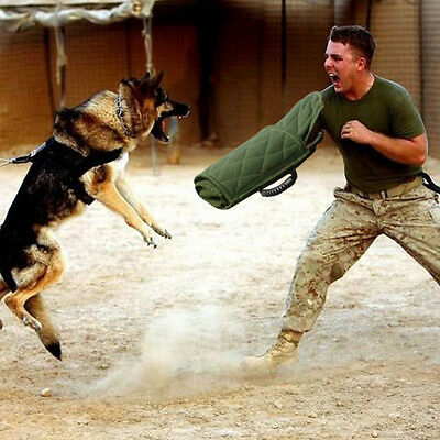 - Young Dog Bite Sleeve Arm Protection Intermediate For German Shepherd Pitbull