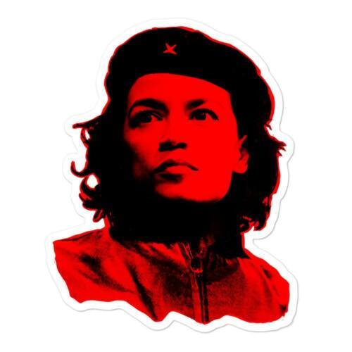 A.O.C. Ocasio Cortez Funny Democratic Socialism Political sticker