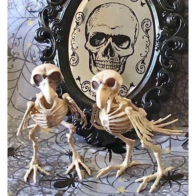 Verrückte Halloween-party (Horror Vogelskelett KRÄHE Tierskelett Verrückt Halloween Skelett party Deko)