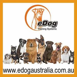 Dog Bark Collar,Remote training collar,electric fence,dog playpen Welshpool Canning Area Preview