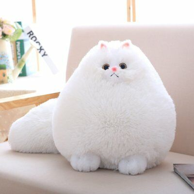 Winsterch Stuffed Cats Plush Animal Toys Animal Baby Doll,White Cat Plush,11.8''](Cat Stuffed Animal)