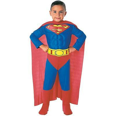 Toddler Superman Muscle Costume (Toddler Superman Muscle Chest Costume Superhero Halloween Toddler Size)