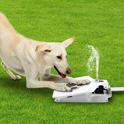 Upgraded Dog Pet Drinking Water Fountain With Step on Paw Pedal Valve Outdoor