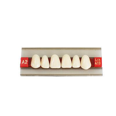 Upper Front Anterior Teeth Acrylic Resin Denture Dental Teeth Shade G419 A2 A3