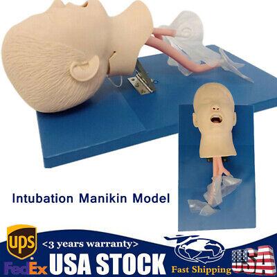 Usa Intubation Manikin Study Teaching Training Model Airway Management Trainer