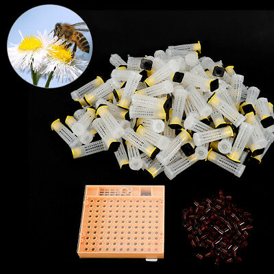 Beekeeping Cups Case Set Bee Queen Rearing Cupkit Box Cell Tool Kit Home Honey