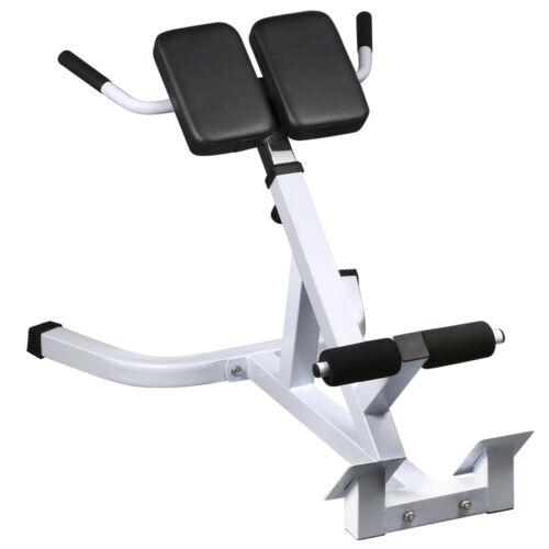 Hyper Extension Back Hamstrings Exercise Ab Bench Gym