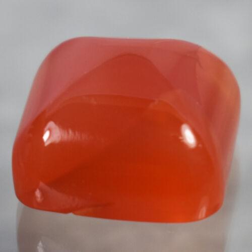 23.79 Ct Impressive Reddish Orange Sugarloaf  Natural Carnelian Gemstone  !