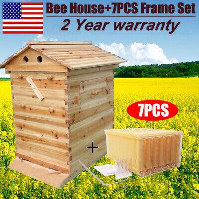 7pcs Free Flowing Honey Hive Beehive Frames Unique Beehive House Cedarwood Box