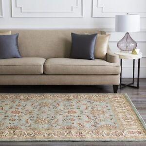 Hand Woven Area Rug Carpet Antique Harwood Vintage Modern Home Décor 8'10 x 12'9