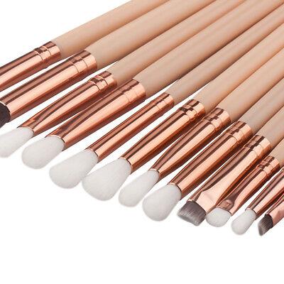 Cheap Makeup Kits (12Pcs Cosmetic Eyebrow Eyeshadow Professional Cheap Makeup Brushes Set Kit)