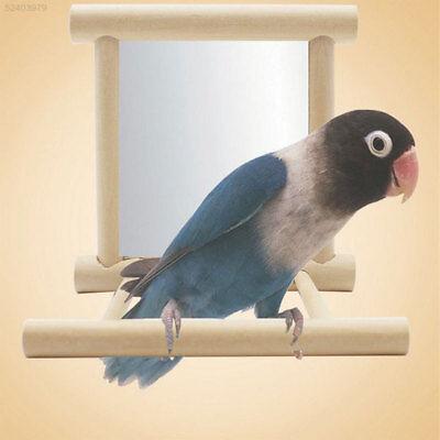 6520 Wooden Bird Toy Mirror Stand Holder Platform Toys For Parrots Cockatiel Gif