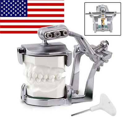 Usadental Lab Adjustable Magnetic Articulator Mount Pre-cast Full Teeth Model