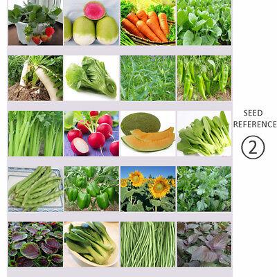 40 Fresh Vegetable Fruit Seeds Emergency-Survival Garden Food Outdoor Living Fresh Garden Fruit
