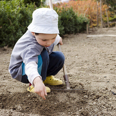Half term and spring are ideal times to hit the garden